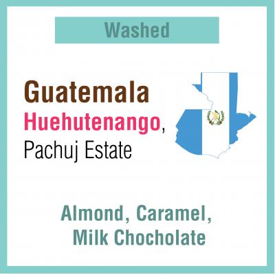 Guatemala Huehutenango (Green Bean)