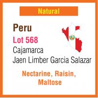 Peru Cajamarca Jaen Limber Garcia Salazar (Lot 568)