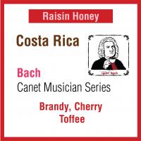 Costa Rica Canet Musician Series - Bach