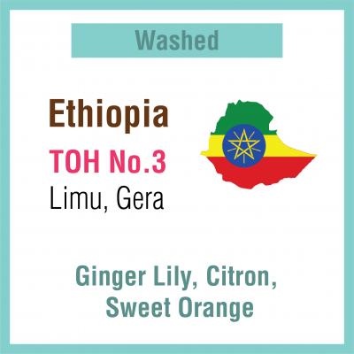 Ethiopia Limu Gera TOH No 3