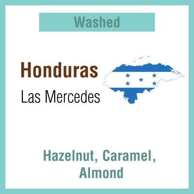 Honduras Las Mercedes  (Green Bean)