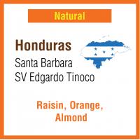 Honduras Santa Barbara