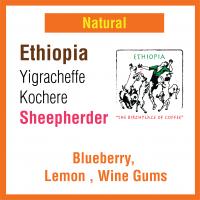 Ethiopia Yigracheffe Kochere Sheepherder Natural (牧羊人)