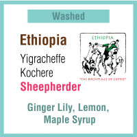 Ethiopia Yigracheffe Kochere Sheepherder (牧羊人)