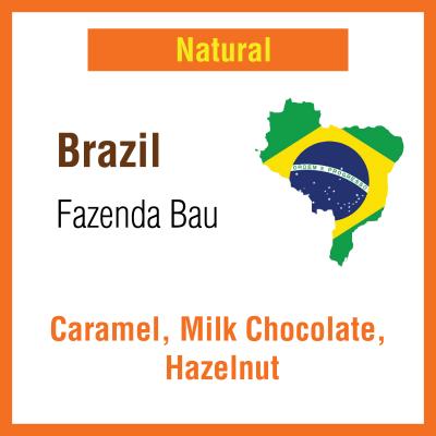 Brazil Fazenda Bau (Green Bean)
